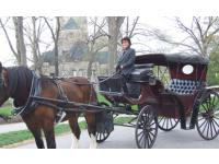 Bucks County Carriages